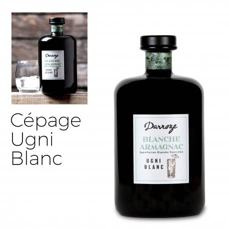 Bas Armagnac - Darroze - Blanche - Ugni Blanc