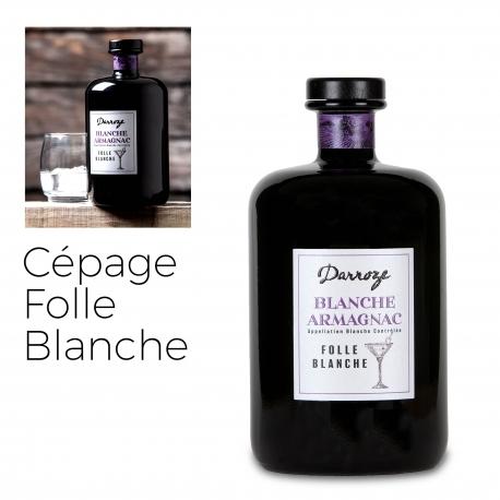 Bas Armagnac - Darroze - Blanche - Folle Blanche