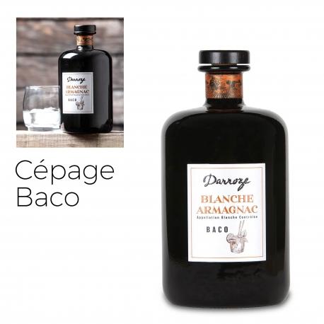 Bas Armagnac - Darroze - Blanche - Baco